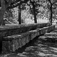 Picnic Table, Blanco State Park, 1950s