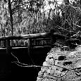 Vehicle Bridge, Buescher State Park, c. 1935