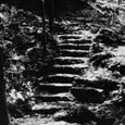 "From Herbert Maier's ""The Library of Original Sources,"" Stone Steps, Mother Neff State Park, c. 1938"